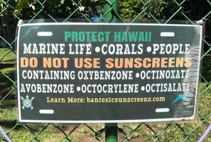 Sonnenschutz sollte Riff- und Korallenfreundlich sein