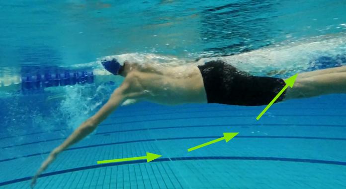 Schwimmtechnik: Zug- und Druckphase (Foto: Bjrön Hauptmannl |swimcademy.com)